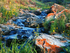 Painted Rocks and Flowing Water